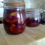Plums Bottled in Syrup